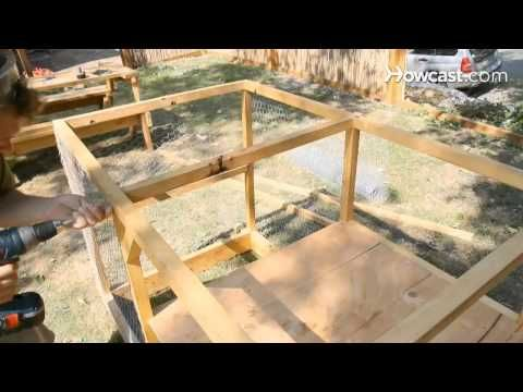 Build the Ultimate Chicken Coop with These Easy Plans