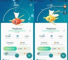 Abgesehen von der farbe ist kein unterschied zwischen den karpadors auszumachen quelle pokemon also go eevee evolution name trick easter egg rh pinterest