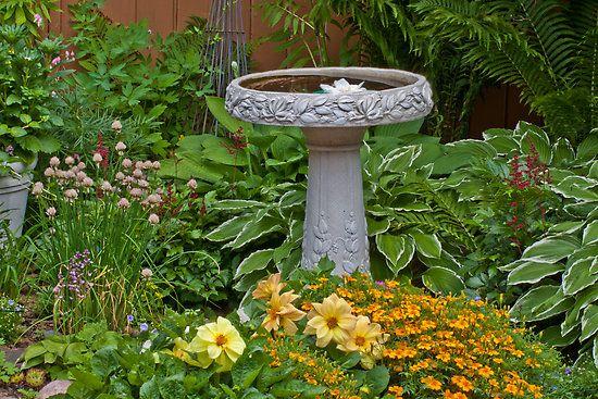 The Best Garden Bird Baths