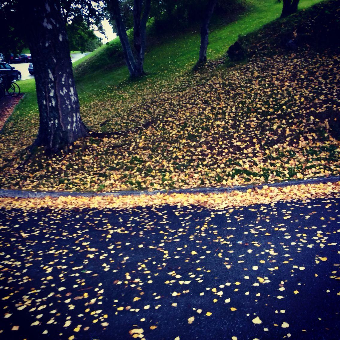 Høsten