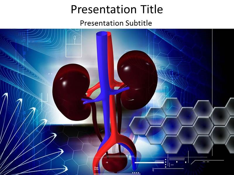 Early kidney disease symptoms kidney failure kidney infection kidney function powerpoint template is embedded with amazing characteristic and looks medical toneelgroepblik Images