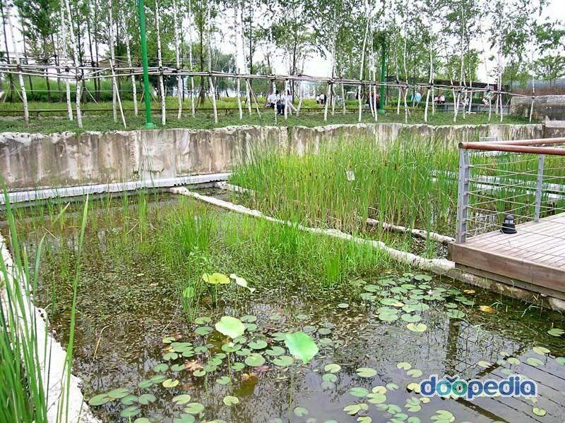 선유도공원 수생식물원