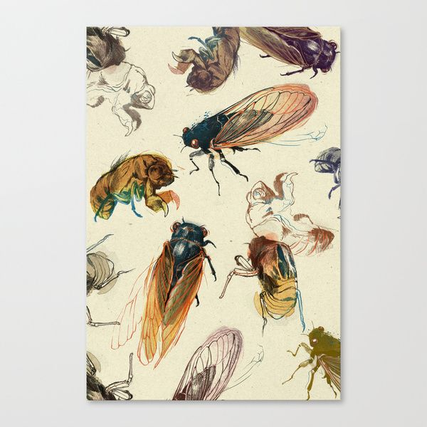 summer cicadas Stretched Canvas by Teagan White | Society6