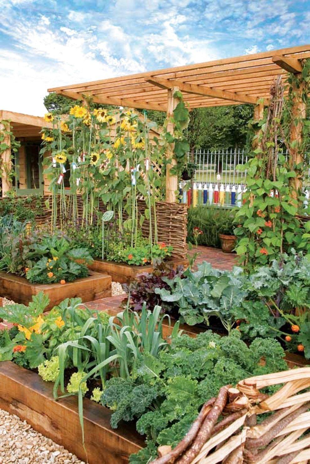 ✔45 Best Backyard Vegetable Garden Designs Ideas #BackyardVegetableGardenDesignsIdeas                #erhöhtegartenbeete