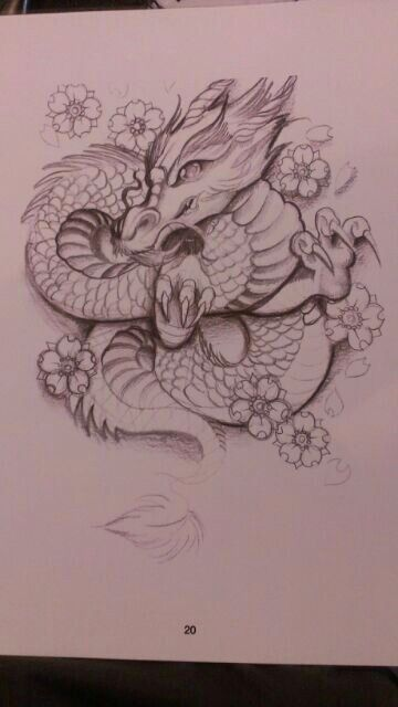 30 Best Cute Dragon Tattoos For Women Images Dragon Tattoo For Women Cute Dragon Tattoo Cute Dragons