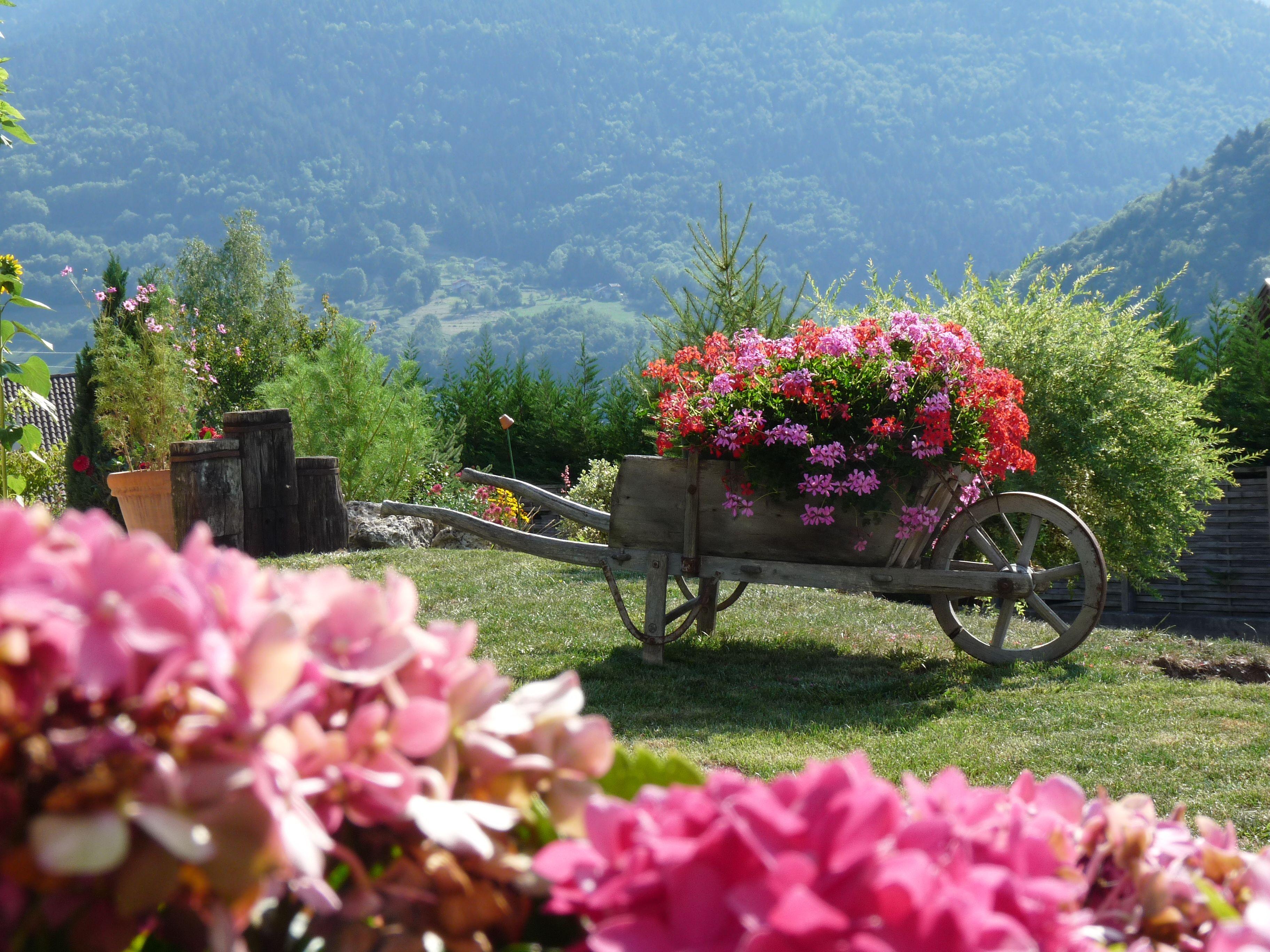 brouette fleurie brouettes charrettes fleuries pinterest brouette fleuri et charrette. Black Bedroom Furniture Sets. Home Design Ideas