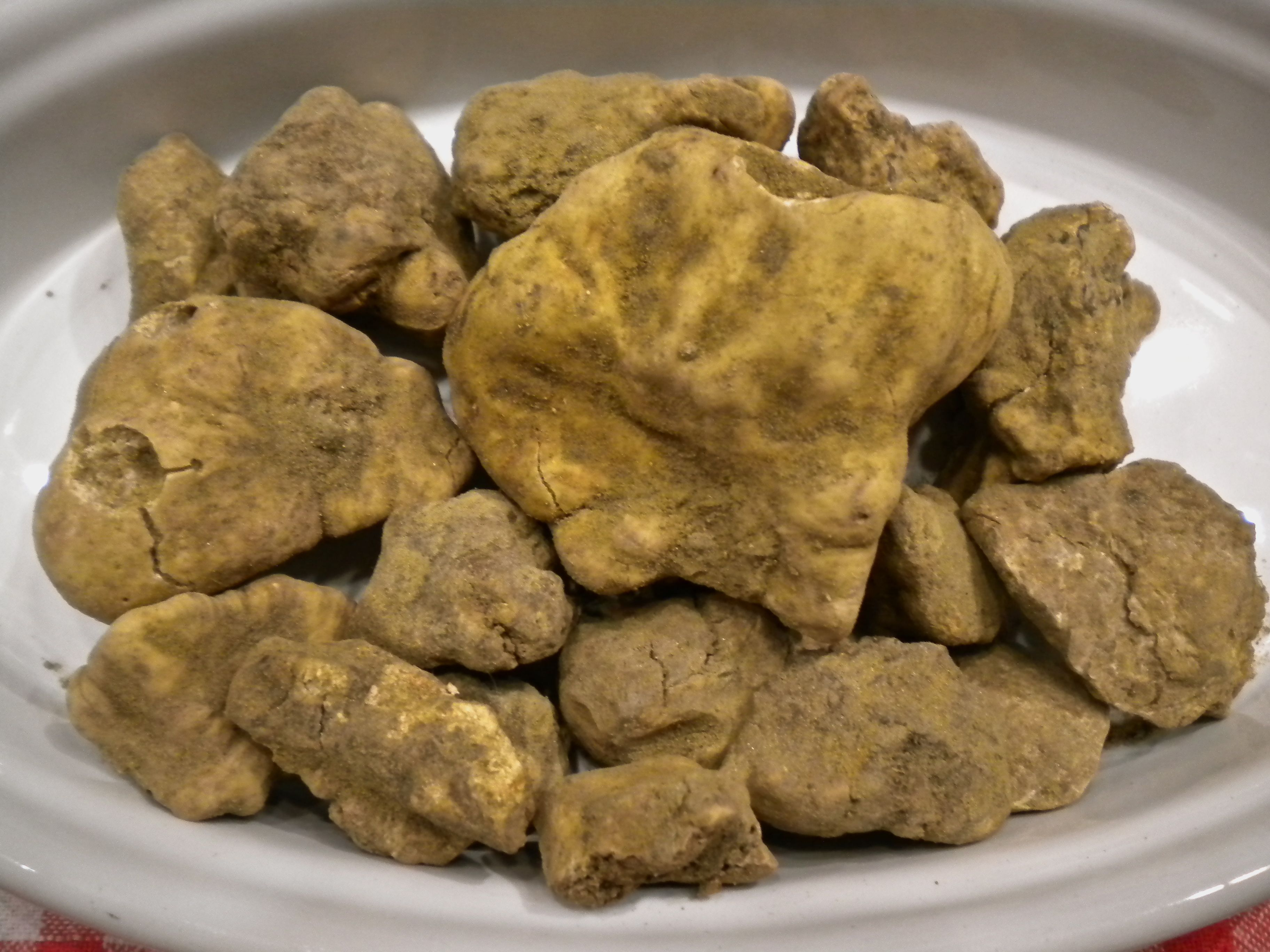 White Truffles .... Begin to make their debut late September and continue until early January.