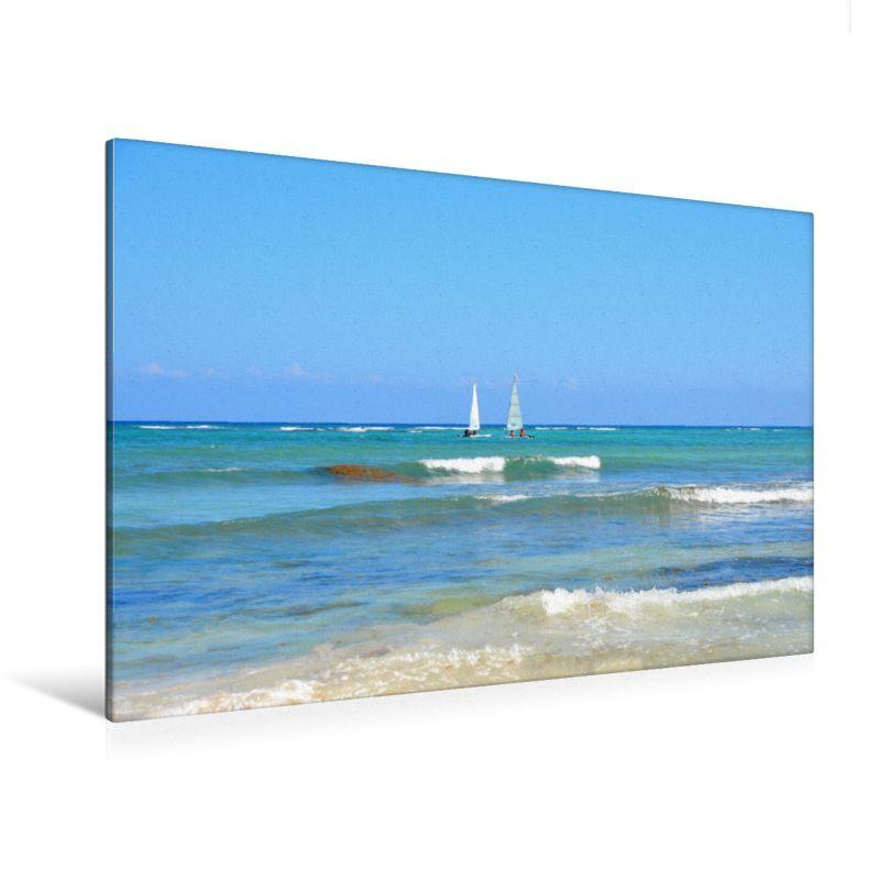 Meer Wasser Palmen Strand Dreambeach Karibik Kalender Premium