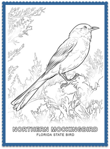 Bird Florida State Coloring Page