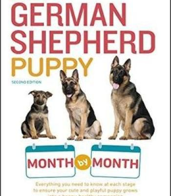 Your German Shepherd Puppy Month By Month 2nd Edition Pdf German