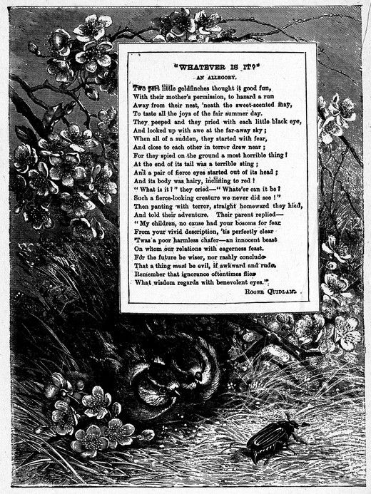 "Page Frame Image with Birds & Flowers ""Whatever Is It?"" Allegorical poem by Harrison Weir"
