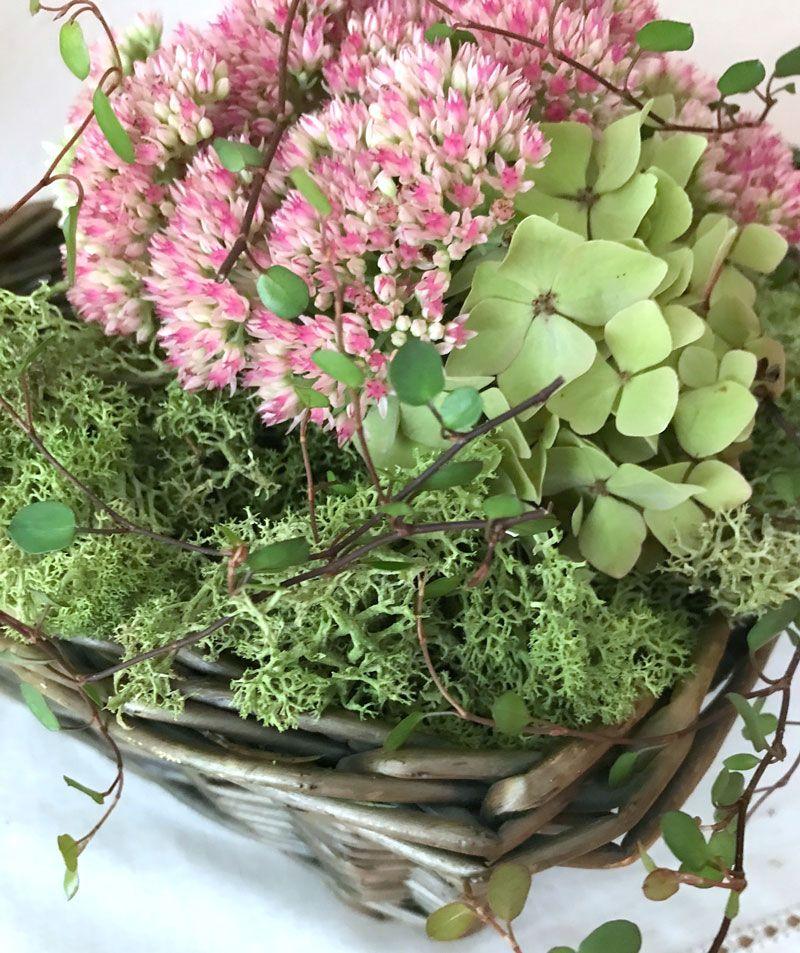 Herbstdeko-Ideen mit Fette Henne und Hortensien