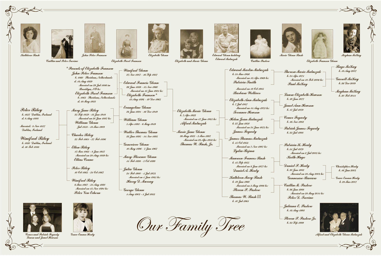 20x30 7 Generation Pedigree Chart Family Tree With Family