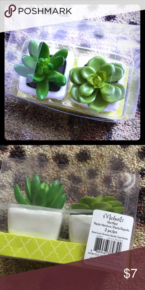 Cute little realistic plants Realistic plastic plants perfect for officer desk Other
