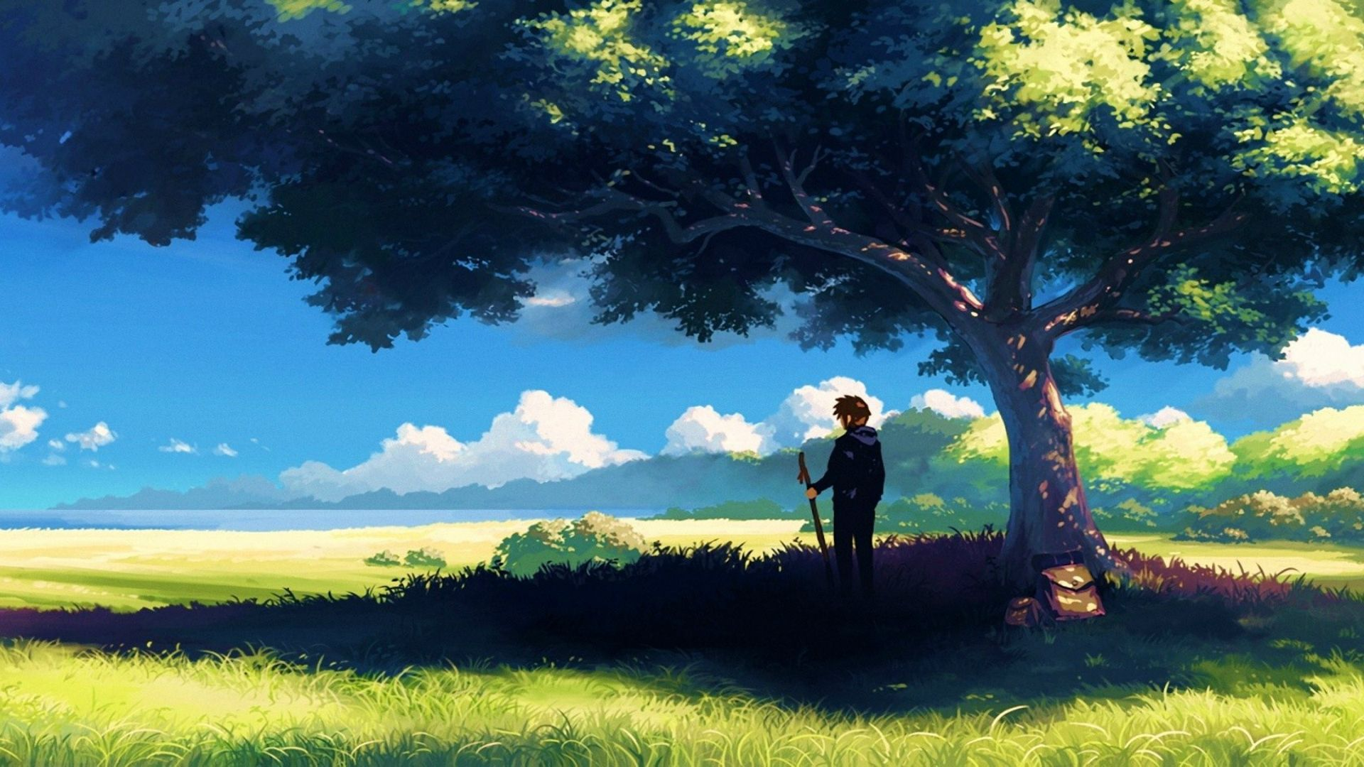 Anime Scenery Wallpaper Anime Backgrounds In 2019 Anime Scenery