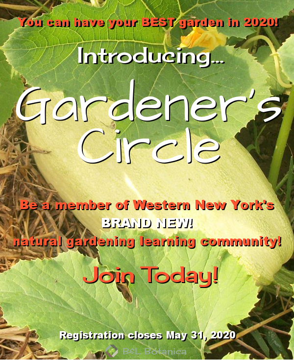 Pin On Gardening- Permaculture