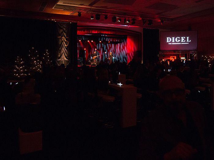 75 Years Of Digel