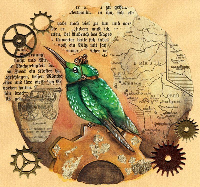 kolibri - DeviantArt
