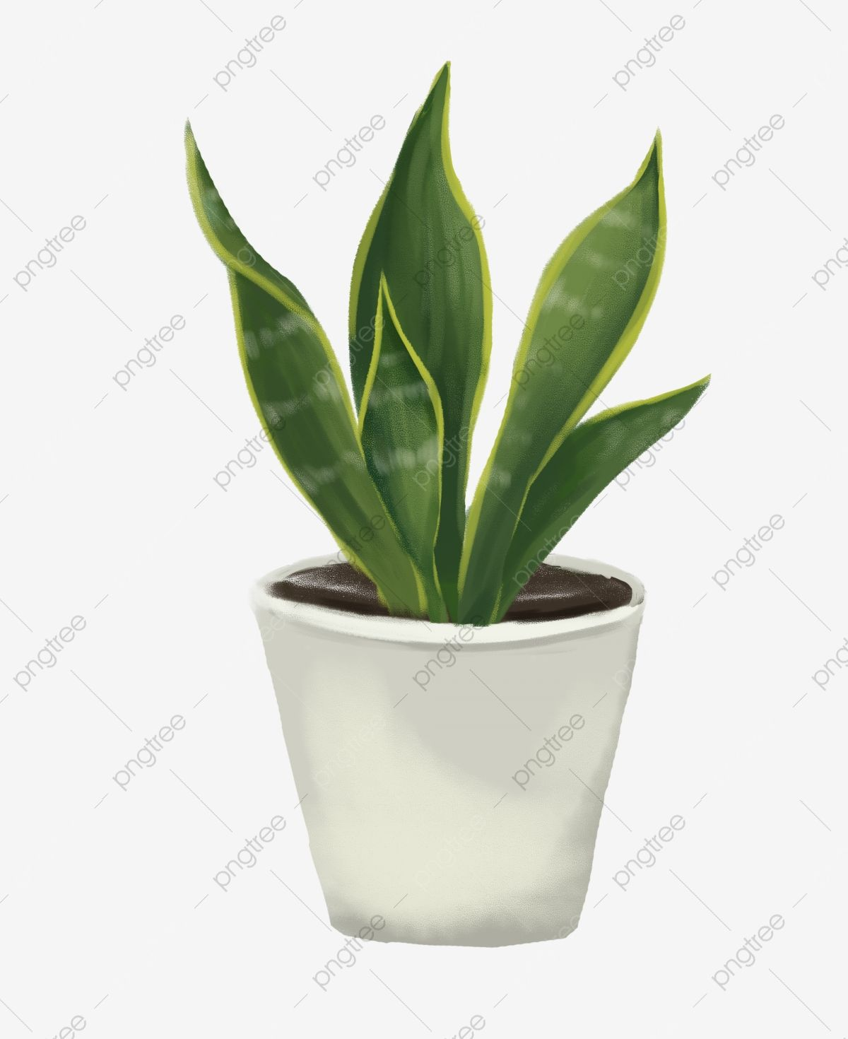 Green Leaves E Flower Pot Beautiful Potted Plant Hand Drawn Potted Illustration Cartoon Illustration Tigert White Flower Pot Plants Spring Flowers Background