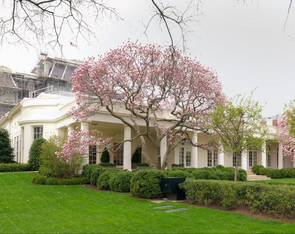 President Kennedy's Rose Garden White house garden