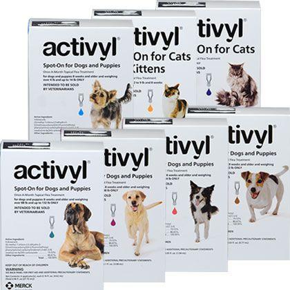 Activyl Tick Treatment For Dogs Tick Treatment Flea Tick