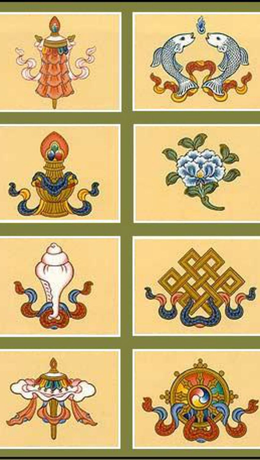 The ashtamangala the eight auspicious symbols of tibetan the ashtamangala the eight auspicious symbols of tibetan buddhism buycottarizona