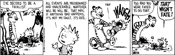 Image result for calvin and hobbes free will