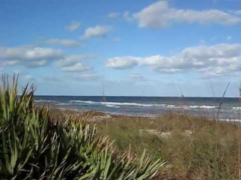 Avalon State Park Florida Beach View