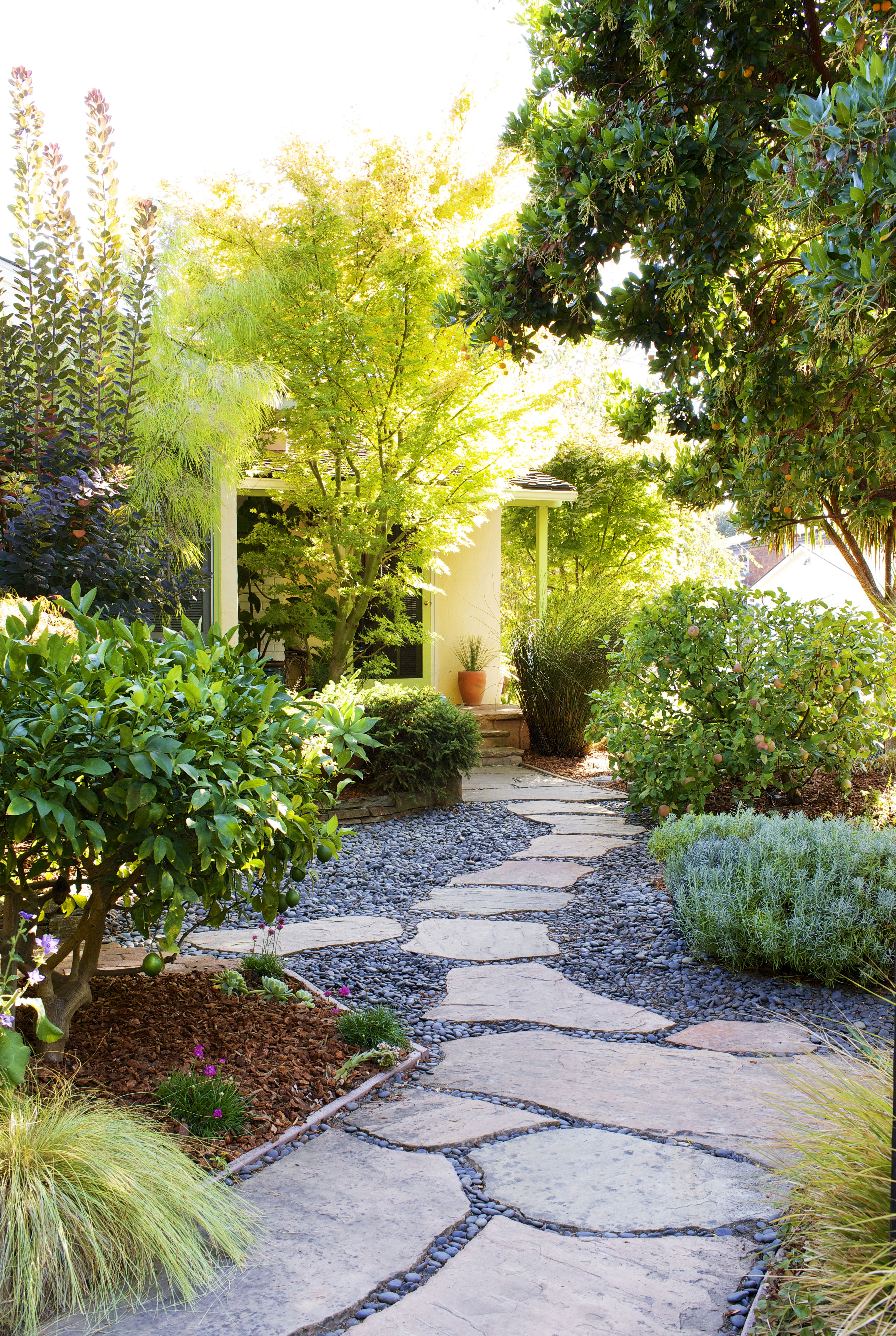Landscaping Without Grass Lawn Free Yard Backyard Landscaping Front Yard Landscaping