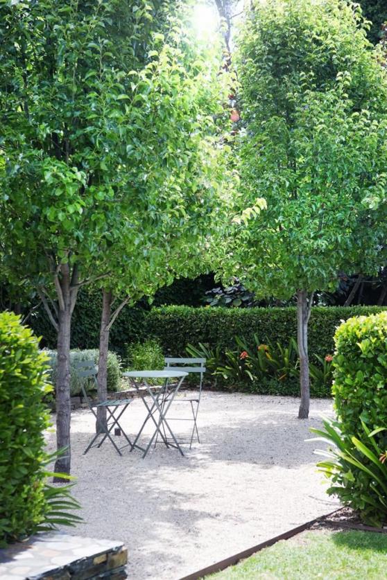 Jardin #courtyardgarden #courtyard #garden