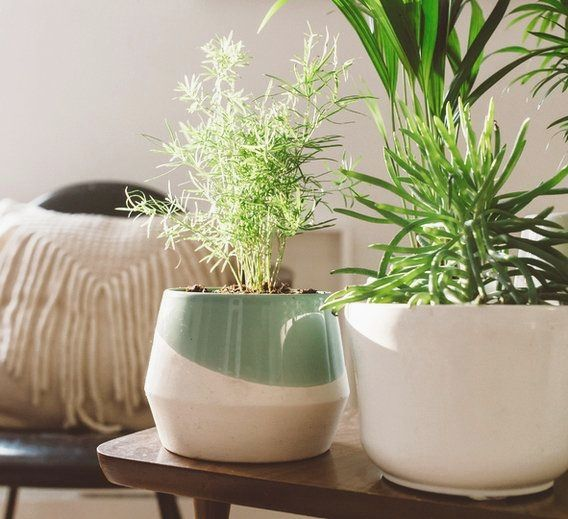 Feng Shui Home Decorating Tips | Arredamento d'interni ...