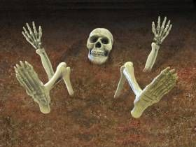 9 Pièces de Squelette