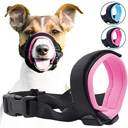 Pin On 宠物用品