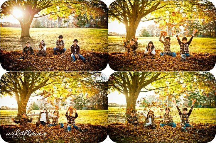 Family Photography, kids in leaves, Fall leaves, autumn, fall photoshoot, throwi... Family Photography, kids in leaves, Fall leaves, autumn, fall photoshoot, throwi... -  -