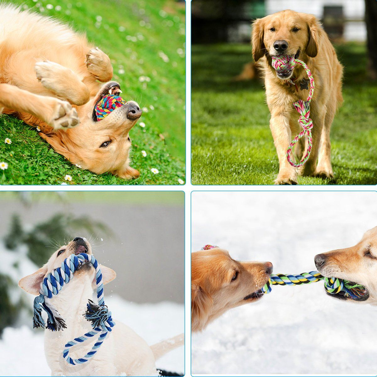 Femonden Pets Puppy Rope Toysdog Teething Toys Chew Toys For Small