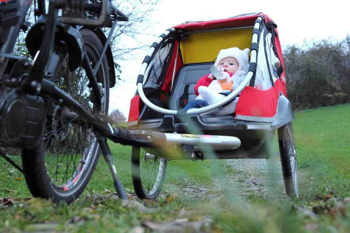 Child Bike Trailer Reviews With Images Child Bike Trailer