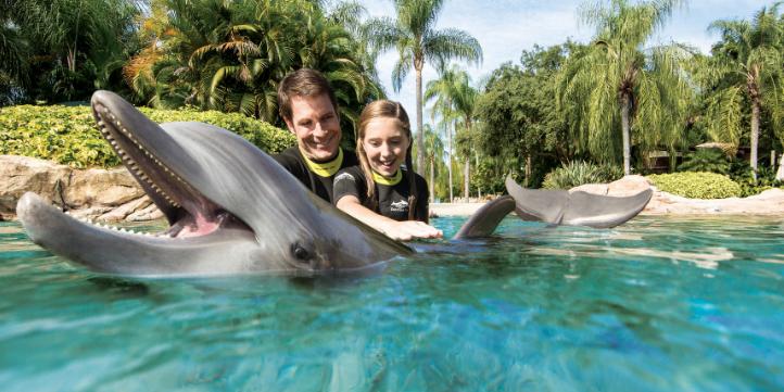 Das erwartet Sie in nächster Zeit in den SeaWorld Parks Orlando