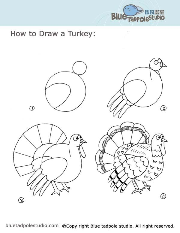 Guajolote Cómo Dibujar Dibujos Dibujos Para Niños E Dibujos Con