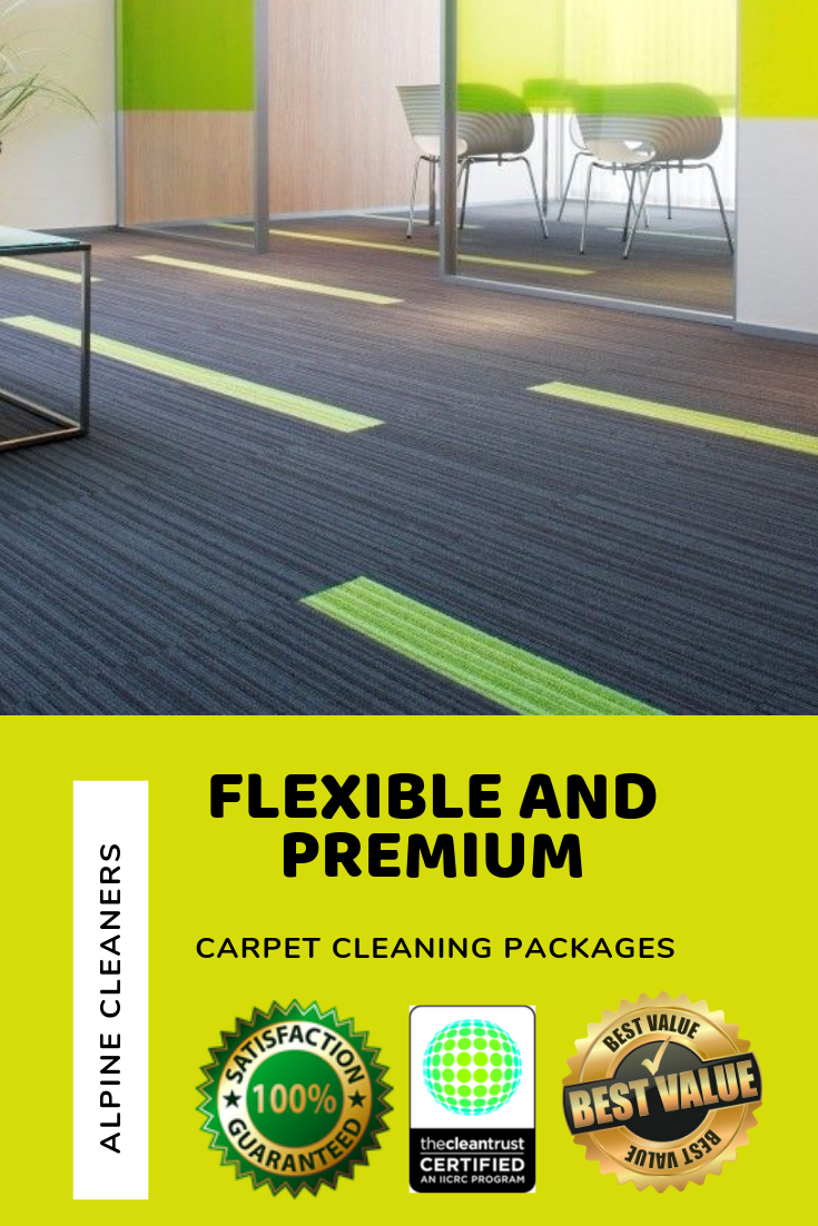 Our 10 Step Premium And Green Carpet Cleaning Process In Residential And Commercial C Green Cleaning Solutions Green Carpet Cleaning Commercial Carpet Cleaning