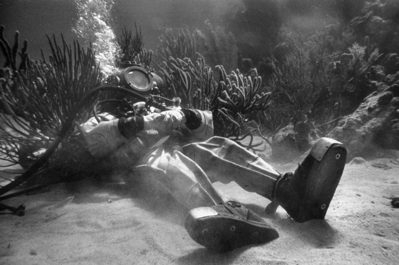 Peter Stackpole