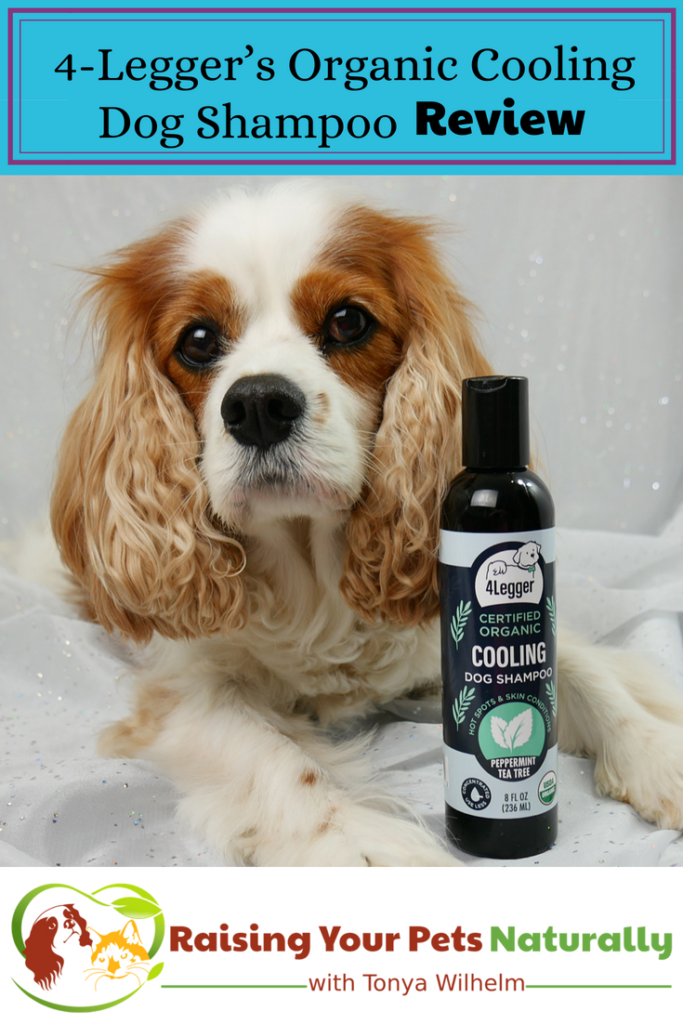 Natural Dog Shampoo Review Usda Certified Organic Dog Shampoo