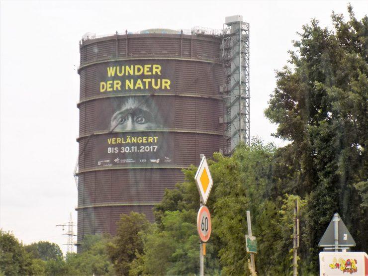Moderner Gartenpavillion im nördlichen Ruhrgebiet von