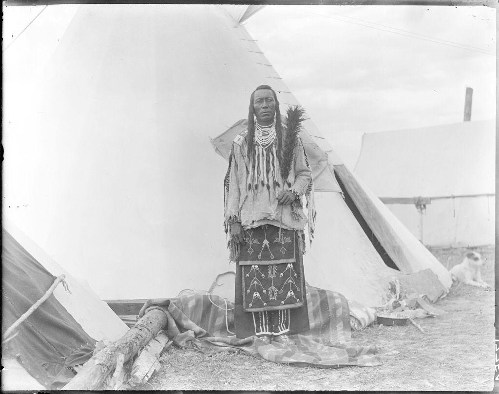 Bull Don T Fall Down Native American Portraits Native American Symbols Native American Peoples