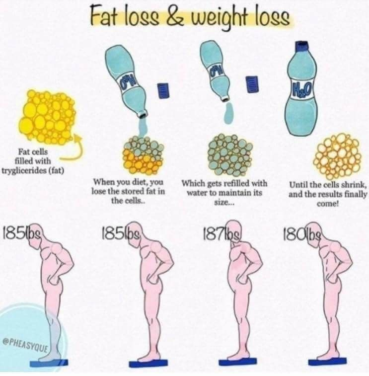 weight loss stagnant on keto diet
