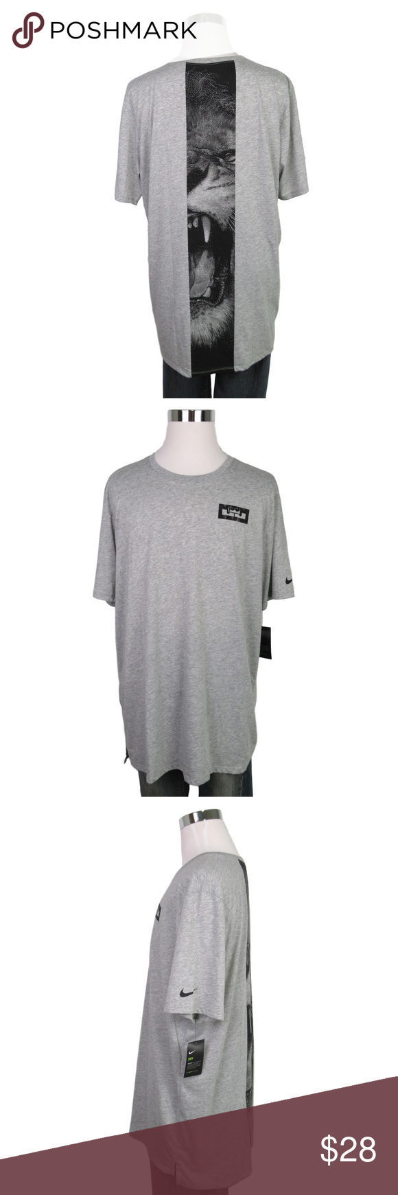Nike Lebron James Graphic Lion Grey Xl T Shirt Nike Lebron James Graphic Lion Grey T Shirt Style 831091 063 Men S Si Tshirt Style Nike Shirts Gray Tshirt [ 1740 x 580 Pixel ]