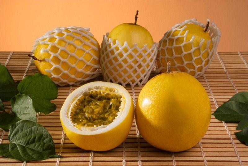 Descubra quais os benefícios o maracujá proporciona na pele. Veja aqui:http://www.noticiasdemoda.com.br/beleza/pele.html