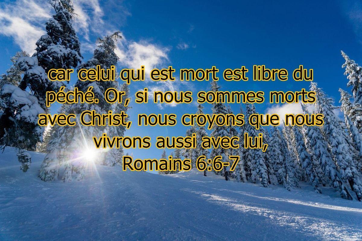 car celui qui est mort est libre du péché. Or, si nous sommes morts avec  Christ, nous croyons que nous vivrons aussi avec lui, Romains 6:6-7   Pêche,  Romain, Mort