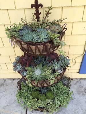 3 Tiered Succulent Planter Flower Planters Tiered Planter Succulents