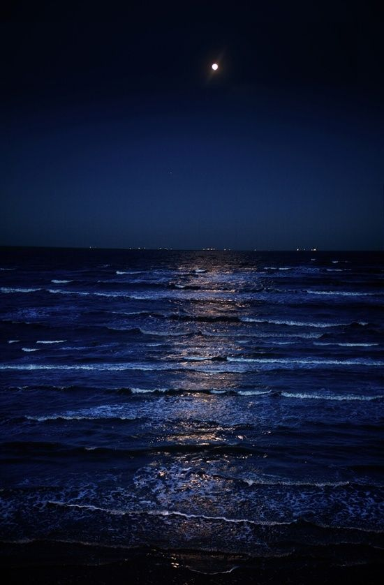 Mint Velvet | At Midnight My home view living by the sea.. Christmas evening walks along the beach #blue