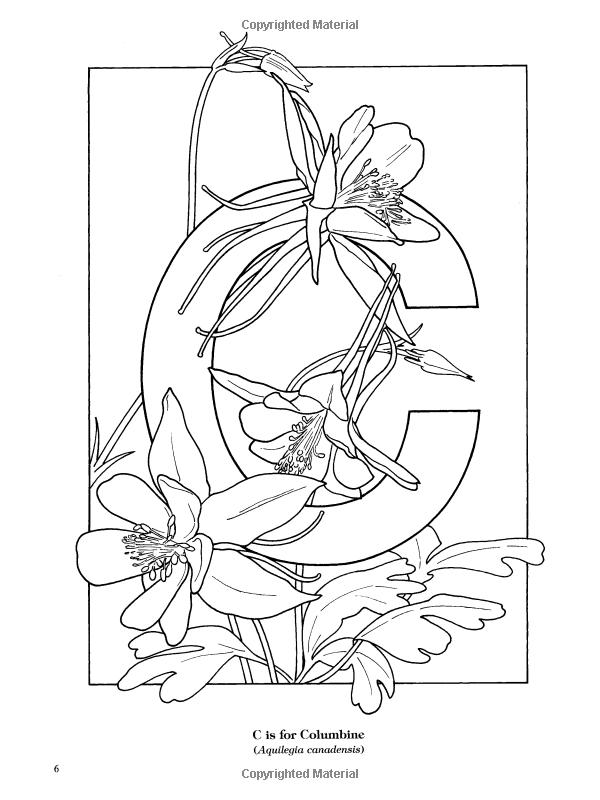 Garden Flowers Alphabet Coloring Book Ruth Soffer Coloring Books For Adults 9780486435954 Books Flower Alphabet Butterfly Coloring Page Alphabet Coloring